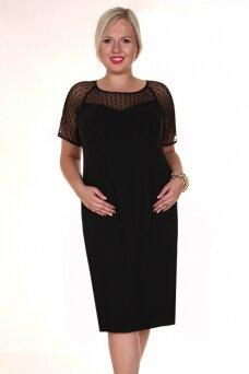 Suknelė FSU298