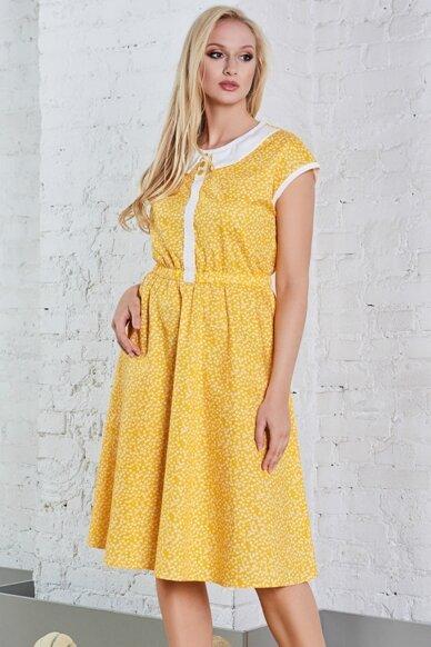 Suknelė A8081