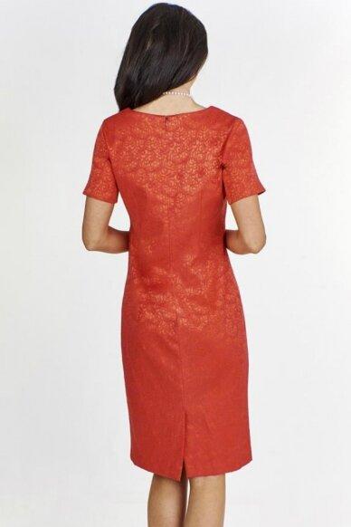 Suknelė FSU929 2