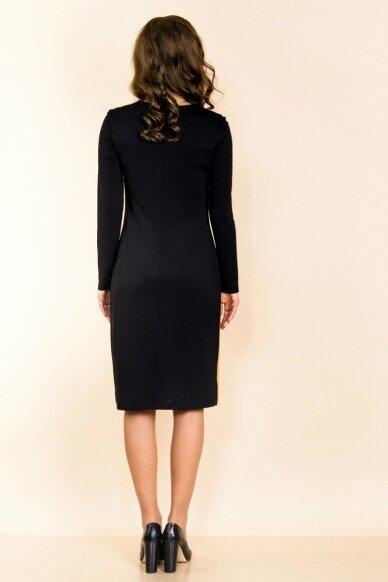 Suknelė PB610 2