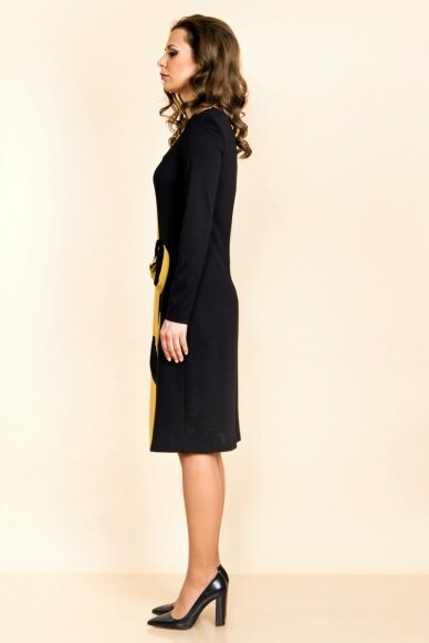 Suknelė PB610 3