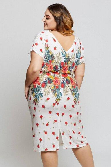 Suknelė Penelope 2